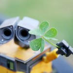 25 Stunning St. Patrick's Day Photos
