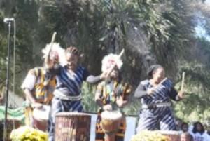 Customer Spotlight Wona Womalan West African Drum Amp Dance