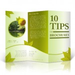 10 Tips for Creating your Brochure