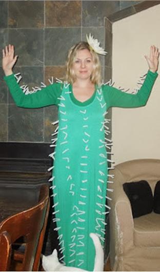 funny cactus halloween costumes