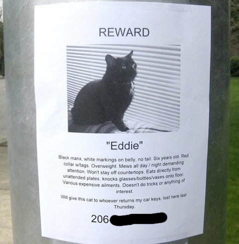 "Funny ""Missing"" Flyers"