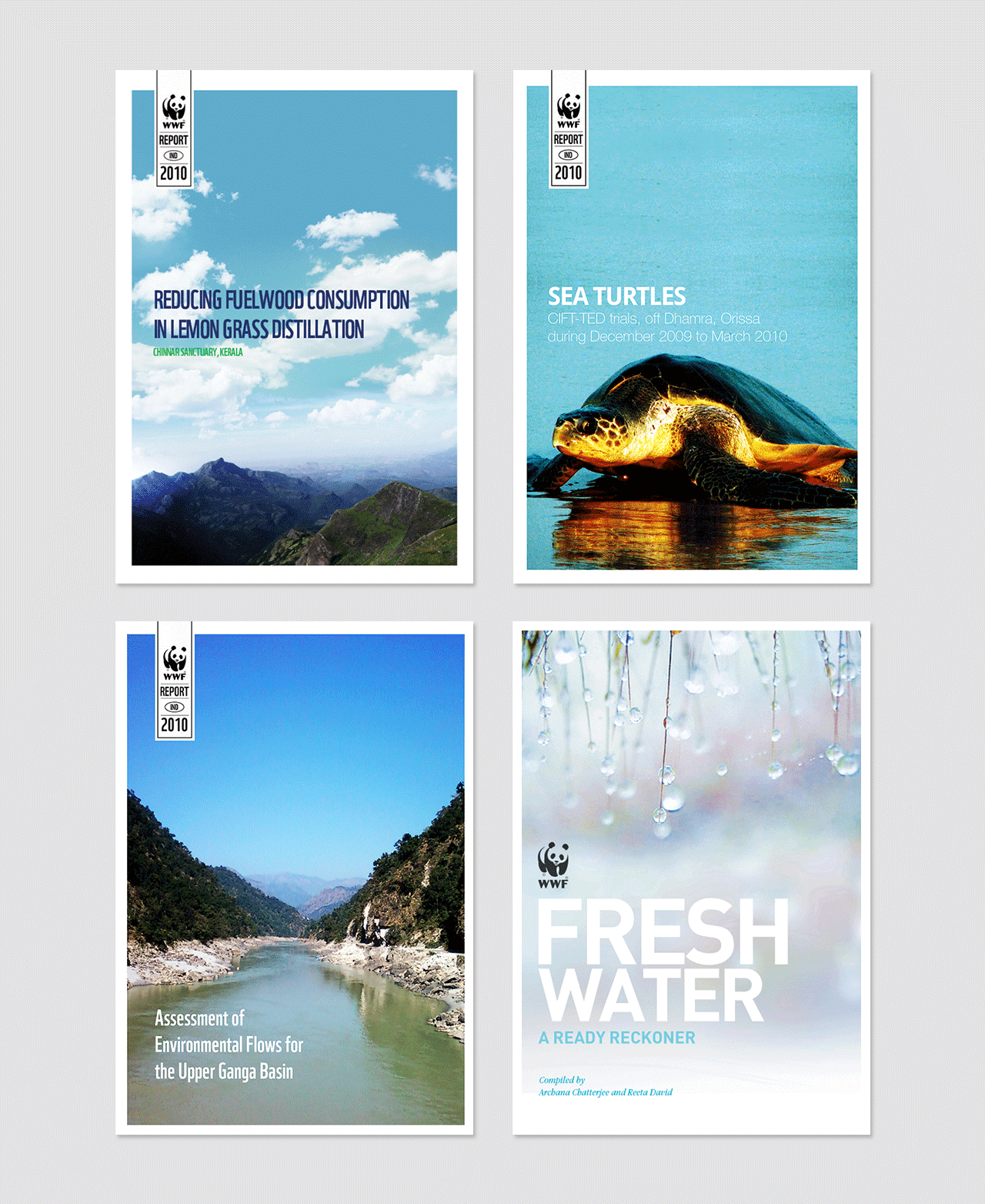 WWF environmental awareness flyer by Multia